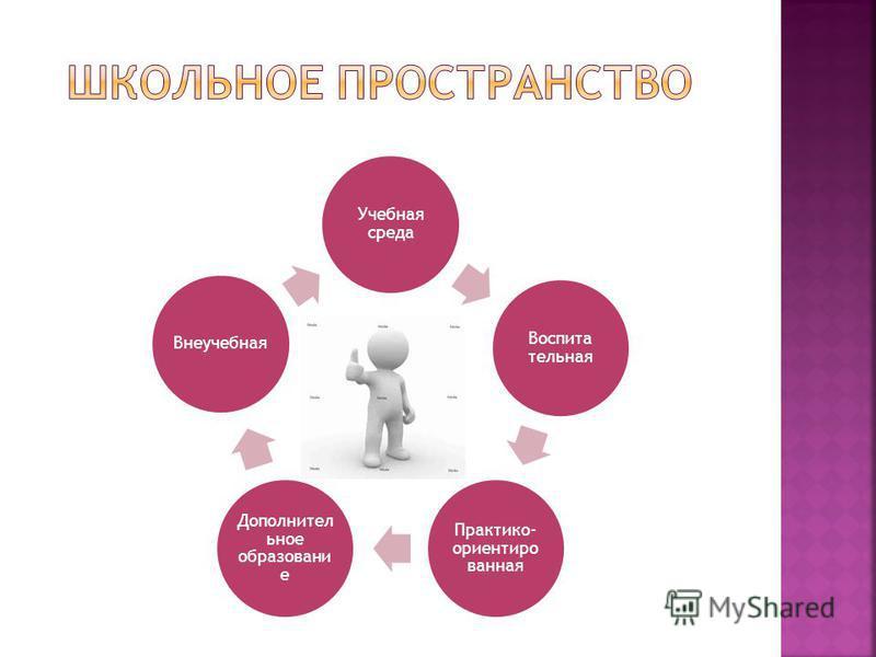Учебная среда Воспита тельная Практико- ориентированная Дополнител ьное образование Внеучебная