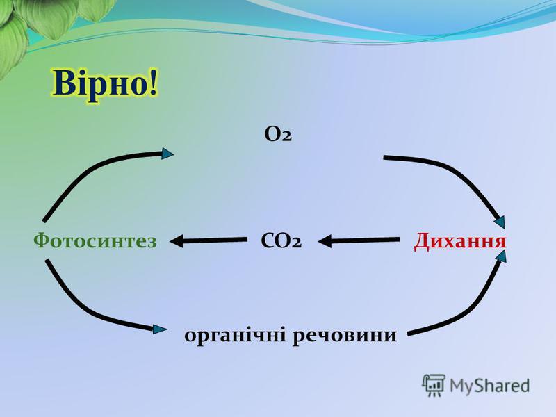 О2 Фотосинтез СО2 Дихання органічні речовини