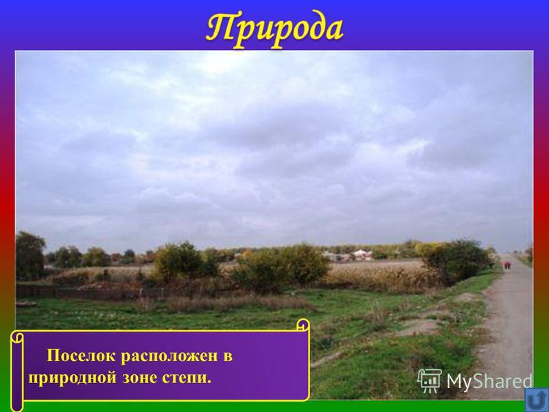 Поселок расположен в природной зоне степи.