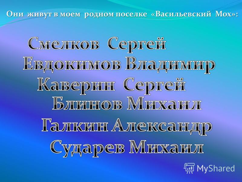 Они живут в моем родном поселке «Васильевский Мох»: