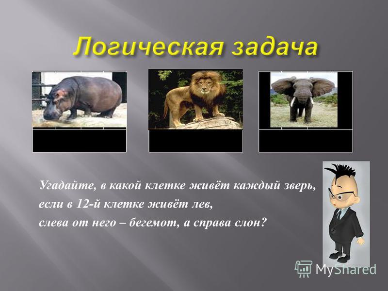 Угадайте, в какой клетке живёт каждый зверь, если в 12- й клетке живёт лев, слева от него – бегемот, а справа слон ?