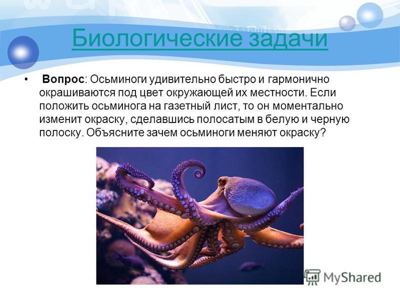 Вопрос: Осьминоги удивительно быстро и гармонично окрашиваются под цвет окружающей их местности. Если положить осьминога на газетный лист, то он моментально изменит окраску, сделавшись полосатым в белую и черную полоску. Объясните зачем осьминоги мен