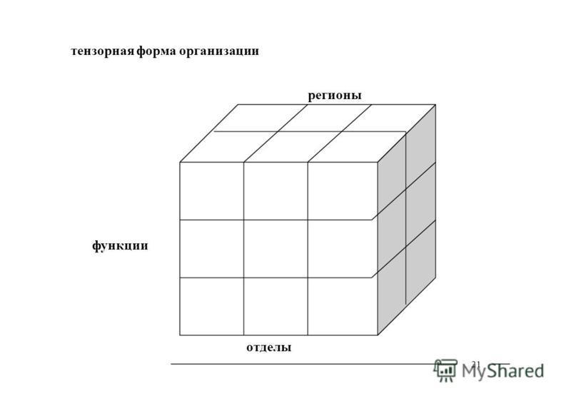 21 тензорная форма организации функции регионы отделы