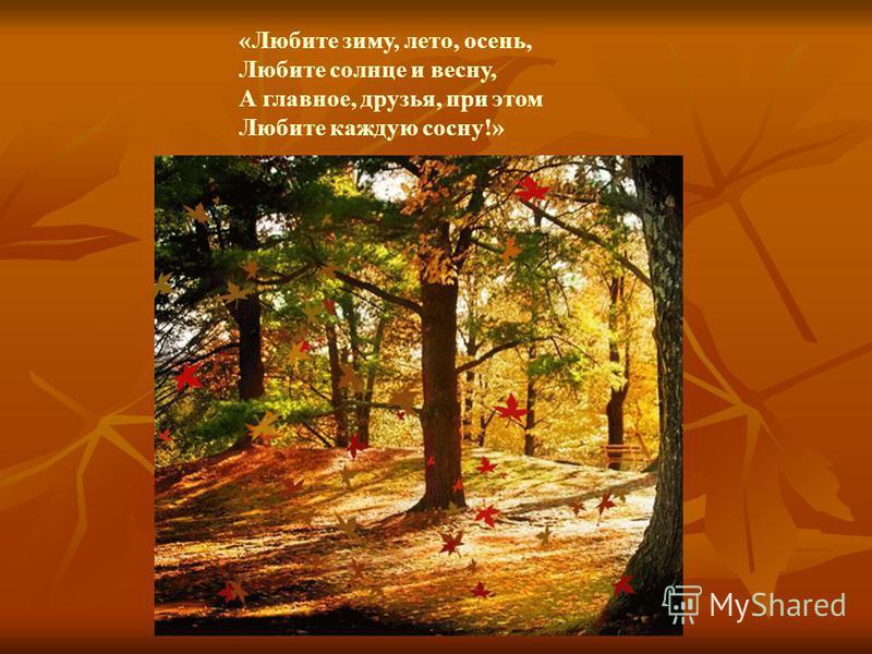 «Любите зиму, лето, осень, Любите солнце и весну, А главное, друзья, при этом Любите каждую сосну!»
