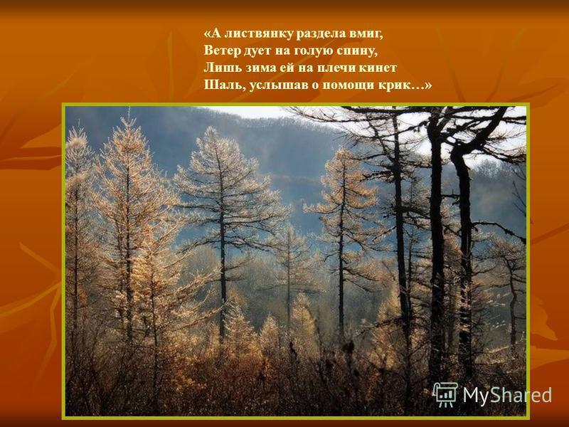 «А листвянку раздела вмиг, Ветер дует на голую спину, Лишь зима ей на плечи кинет Шаль, услышав о помощи крик…»