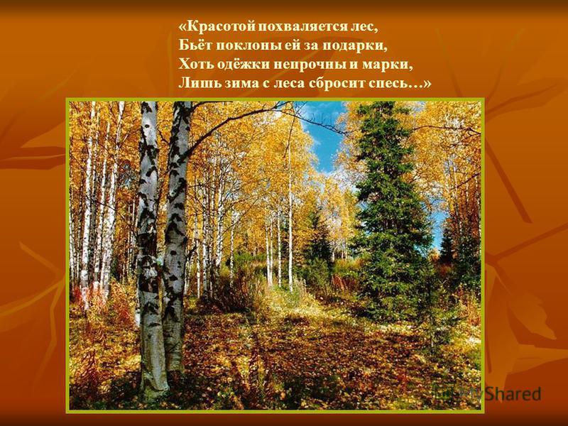«Красотой похваляется лес, Бьёт поклоны ей за подарки, Хоть одёжки непрочны и марки, Лишь зима с леса сбросит спесь…»
