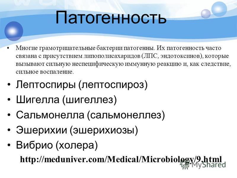 Многие грамотрицательные бактерии патогенны. Их патогенность часто связана с присутствием липополисахаридов (ЛПС, эндотоксинов), которые вызывают сильную неспецифическую иммунную реакцию и, как следствие, сильное воспаление. Лептоспиры (лептоспироз)