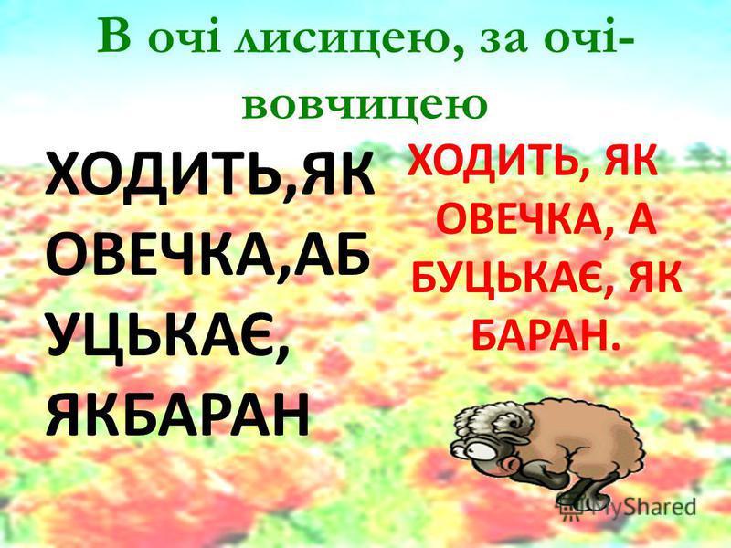 В очі лисицею, за очі- вовчицею ХОДИТЬ,ЯК ОВЕЧКА,АБ УЦЬКАЄ, ЯКБАРАН ХОДИТЬ, ЯК ОВЕЧКА, А БУЦЬКАЄ, ЯК БАРАН.