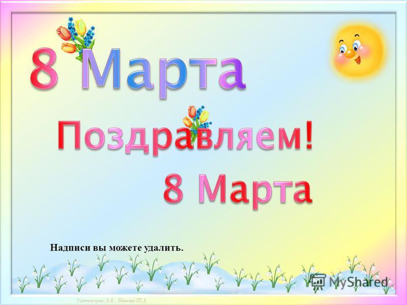 Матюшкина А.В., Иванова Т.А. Надписи вы можете удалить.