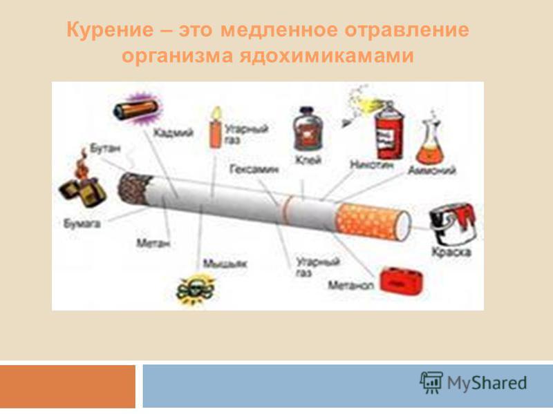 Курение – это медленное отравление организма ядохимикатами