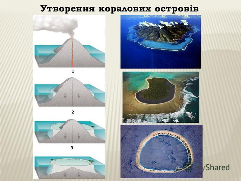 Утворення коралових островів