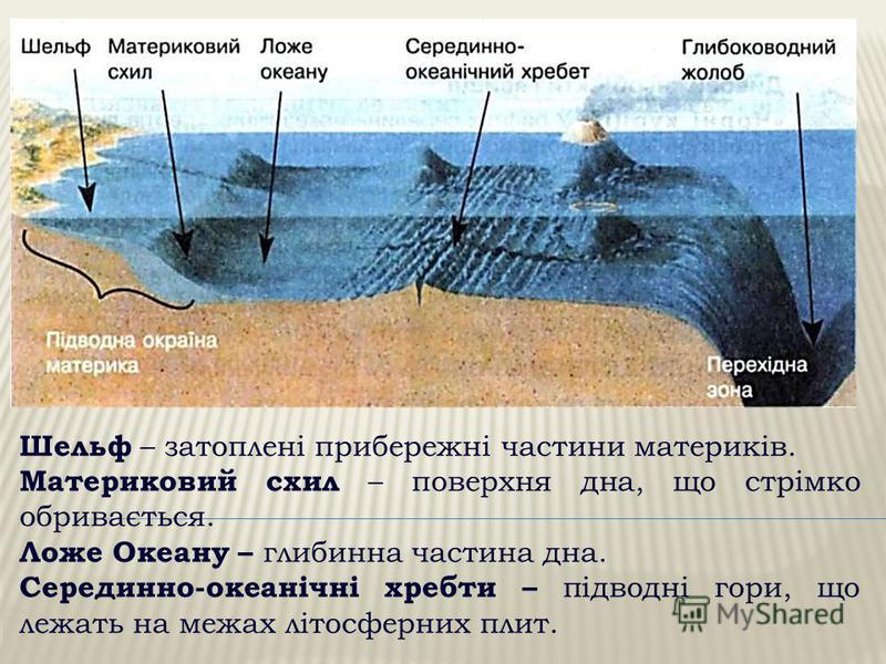Шельф – затоплені прибережні частини материків. Материковий схил – поверхня дна, що стрімко обривається. Ложе Океану – глибинна частина дна. Серединно-океанічні хребти – підводні гори, що лежать на межах літосферних плит.