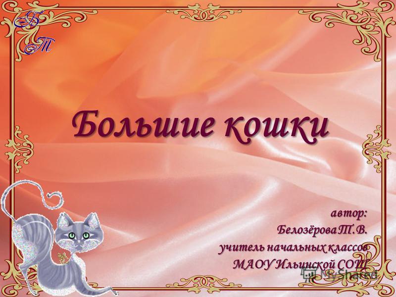 Большие кошки автор: Белозёрова Т.В. учитель начальных классов МАОУ Ильинской СОШ