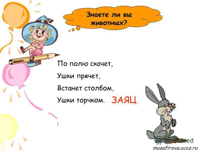 musafirova.ucoz.ru Знаете ли вы животных? В подполье, в каморке Живёт она в норке, Серая малышка. Кто же это? МЫШКА