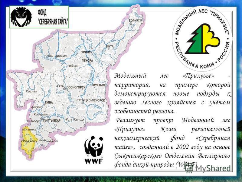 Модельный лес «Прилузье» - территория, на примере которой демонстрируются новые подходы к ведению лесного хозяйства с учётом особенностей региона. Реализует проект Модельный лес «Прилузье» Коми региональный некоммерческий фонд «Серебряная тайга», соз