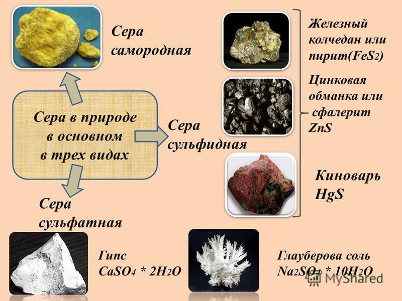 Сера в природе в основном в трех видах Сера самородная Сера сульфидная Сера сульфатная Железный колчедан или пирит(FeS 2 ) Цинковая обманка или сфалерит ZnS Киноварь HgS Глауберова соль Na 2 SO 4 * 10H 2 O Гипс CaSO 4 * 2H 2 O