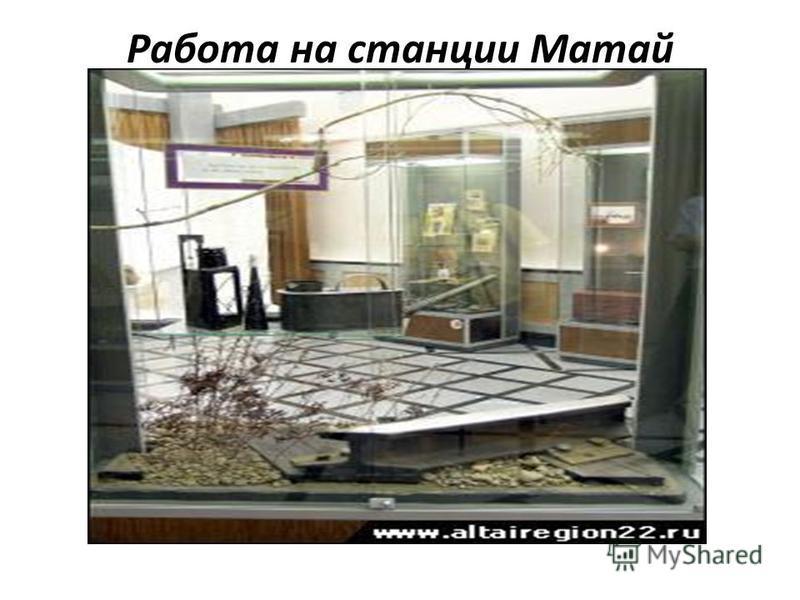 Работа на станции Матай