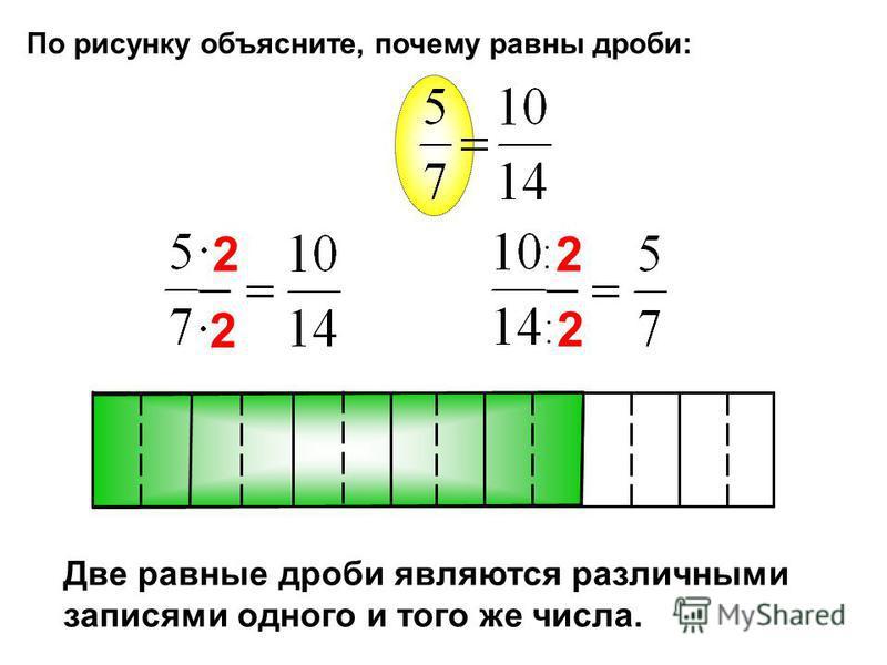 По рисунку объясните, почему равны дроби: 2 2 2 2 Две равные дроби являются различными записями одного и того же числа.