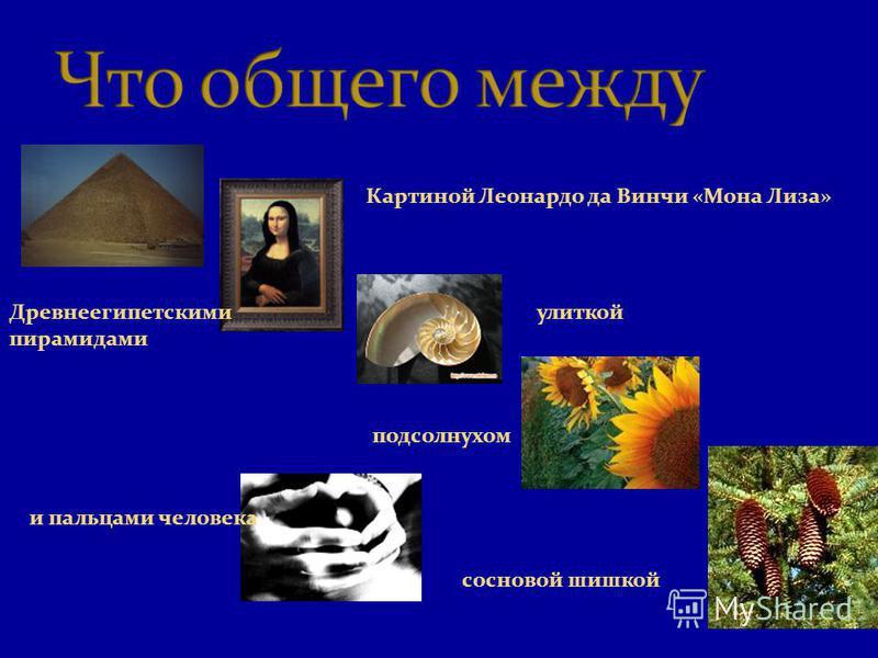 Древнеегипетскими пирамидами Картиной Леонардо да Винчи «Мона Лиза» улиткой подсолнухом сосновой шишкой и пальцами человека