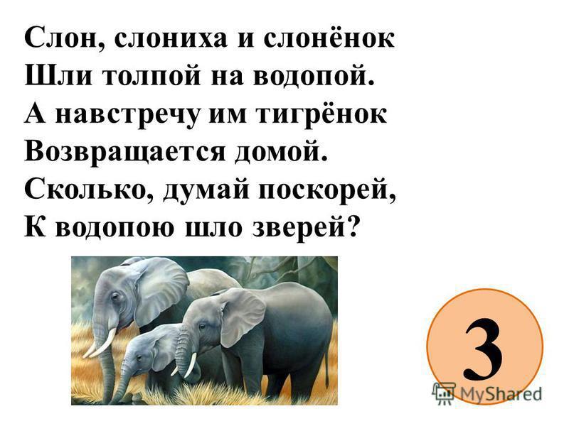 Слон, слониха и слонёнок Шли толпой на водопой. А навстречу им тигрёнок Возвращается домой. Сколько, думай поскорей, К водопою шло зверей? 3
