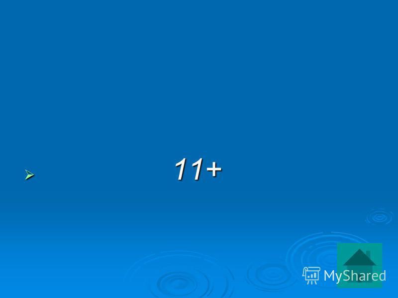 11+ 11+