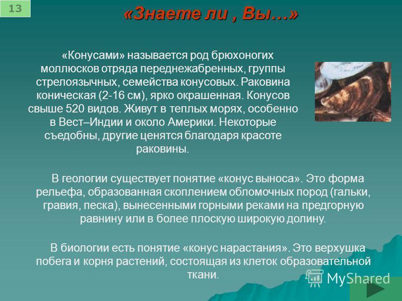 «Знаете ли, Вы…» «Конусами» называется род брюхоногих моллюсков отряда переднежаберных, группы стрелоязычных, семейства конусовых. Раковина коническая (2-16 см), ярко окрашенная. Конусов свыше 520 видов. Живут в теплых морях, особенно в Вест–Индии и