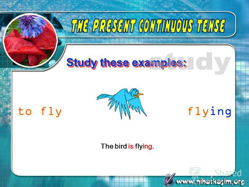 Study these examples: The bird is flying. to flyflying