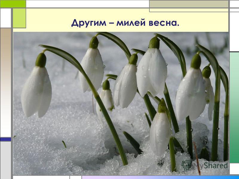 Другим – милей весна.