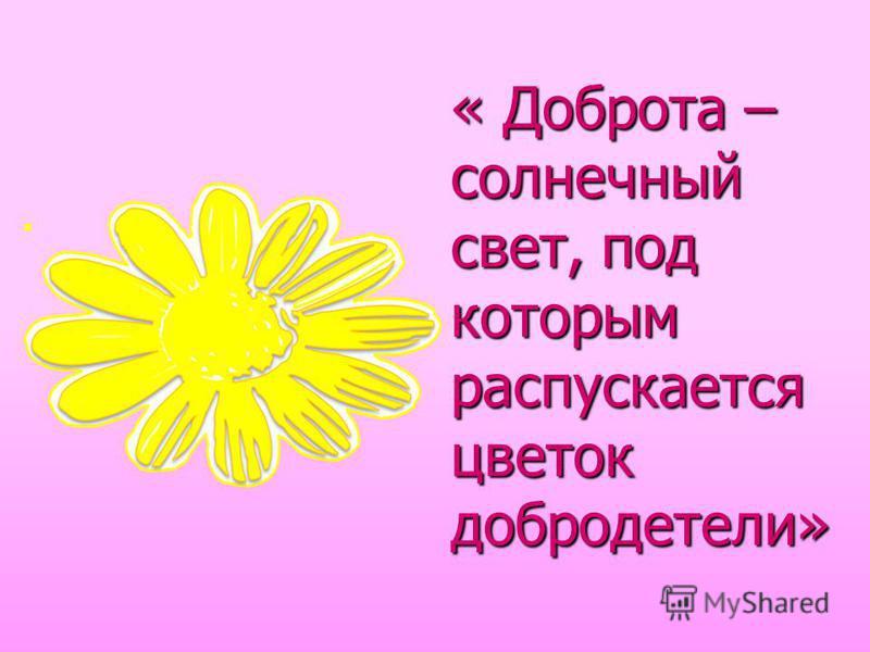 « Доброта – солнечный свет, под которым распускается цветок добродетели»