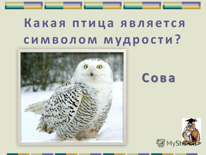 1 апреля в честь принятия в 1906 году Международ ной конвенции по охране птиц. Когда отмечается Международный День птиц? Когда отмечается Международный День птиц?