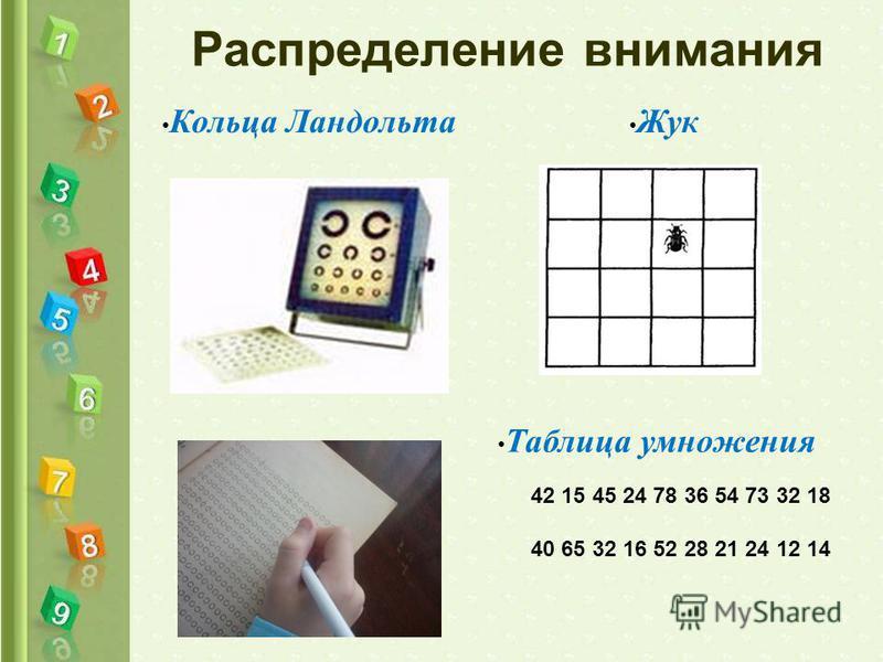 Распределение внимания Кольца Ландольта Таблица умножения Жук 42 15 45 24 78 36 54 73 32 18 40 65 32 16 52 28 21 24 12 14