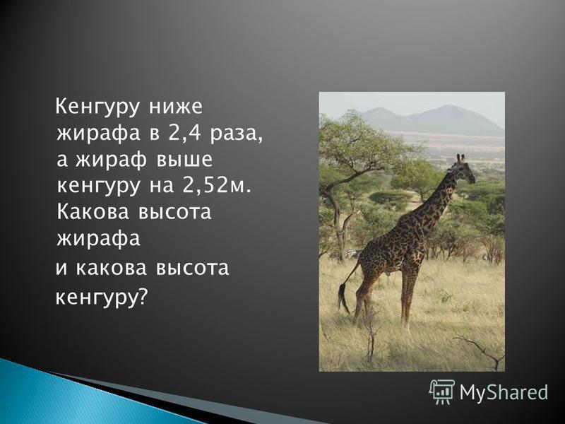 Кенгуру ниже жирафа в 2,4 раза, а жираф выше кенгуру на 2,52 м. Какова высота жирафа и какова высота кенгуру?