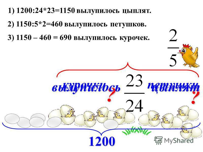 1200 курочки петушки 1) 1200:24*23=1150 вылупилось цыплят. 2) 1150:5*2=460 вылупилось петушков. ? ? 3) 1150 – 460 = 690 вылупилось курочек. вылупилось цыплят