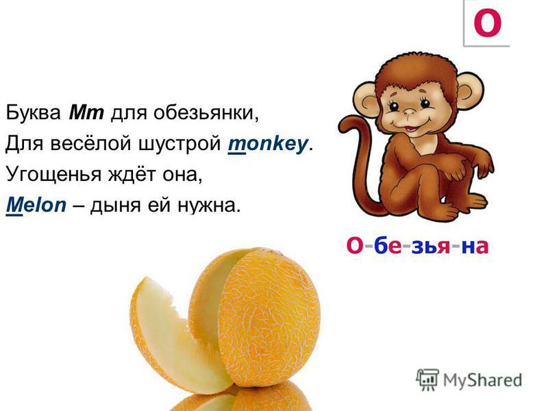 Буква Mm для обезьянки, Для весёлой шустрой monkey. Угощенья ждёт она, Melon – дыня ей нужна.
