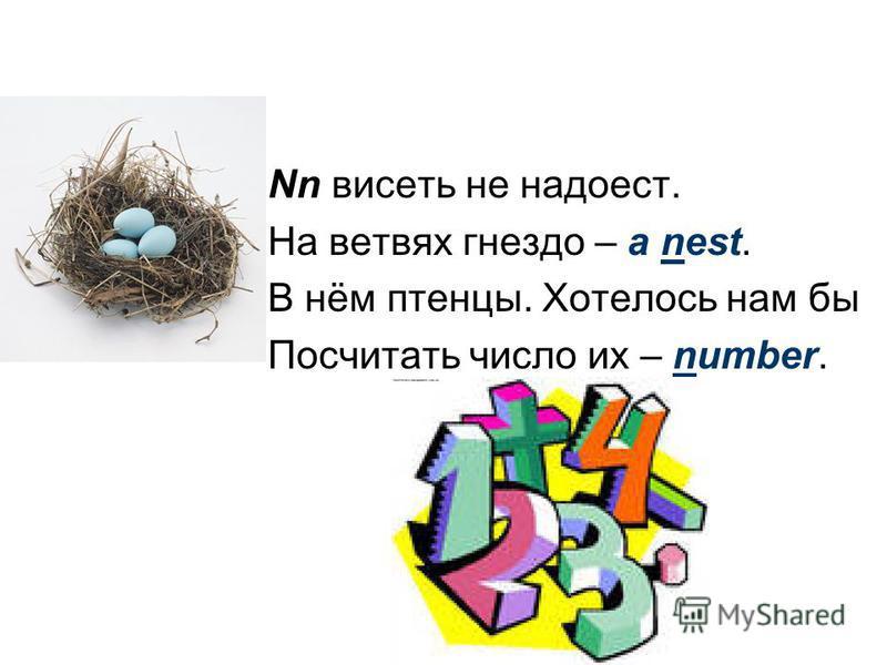 Nn висеть не надоест. На ветвях гнездо – a nest. В нём птенцы. Хотелось нам бы Посчитать число их – number.