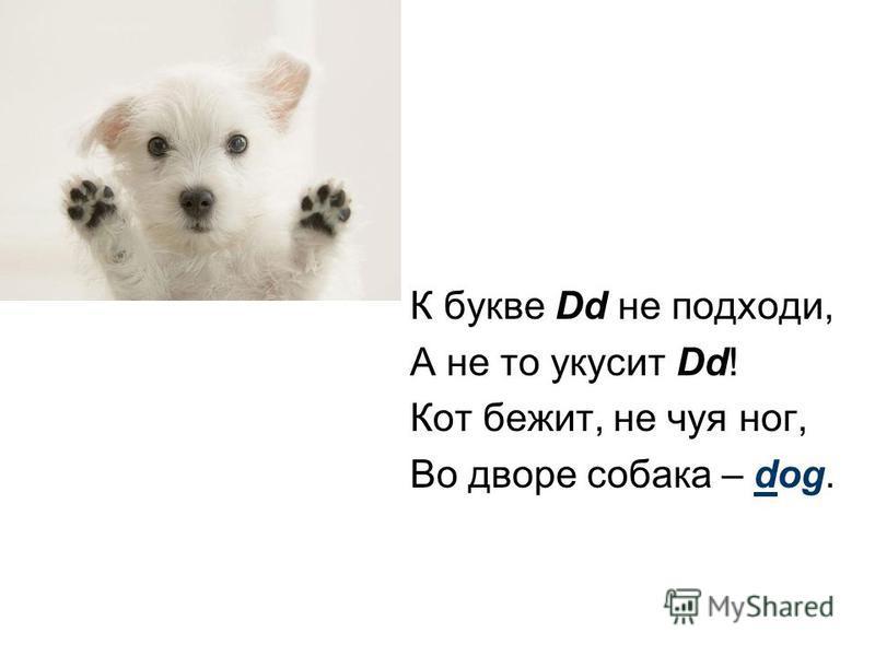 К букве Dd не подходи, А не то укусит Dd! Кот бежит, не чуя ног, Во дворе собака – dog.