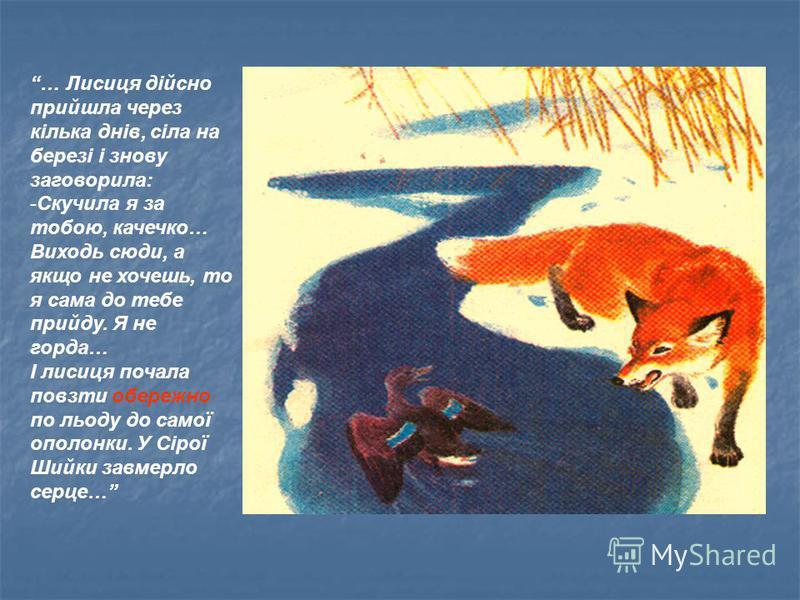 … Лисиця дійсно прийшла через кілька днів, сіла на березі і знову заговорила: -Скучила я за тобою, качечко… Виходь сюди, а якщо не хочешь, то я сама до тебе прийду. Я не горда… І лисиця почала повзти обережно по льоду до самої ополонки. У Сірої Шийки