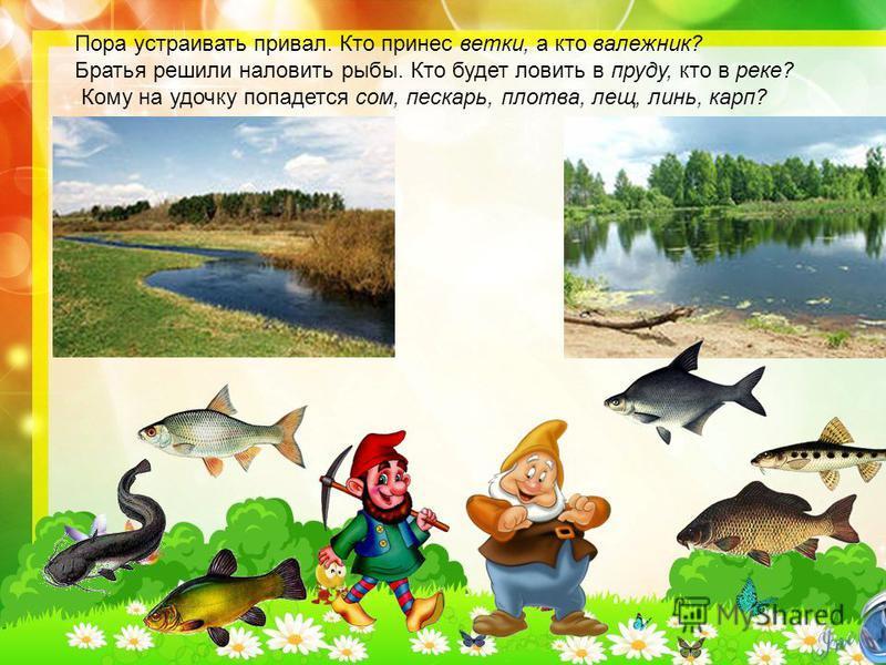 Пора устраивать привал. Кто принес ветки, а кто валежник? Братья решили наловить рыбы. Кто будет ловить в пруду, кто в реке? Кому на удочку попадется сом, пескарь, плотва, лещ, линь, карп?