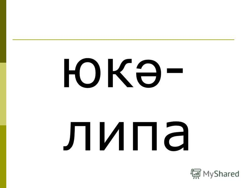 юк ә - липа