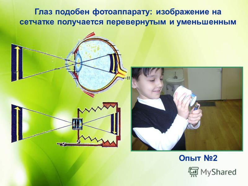 Глаз подобен фотоаппарату: изображение на сетчатке получается перевернутым и уменьшенным Опыт 2