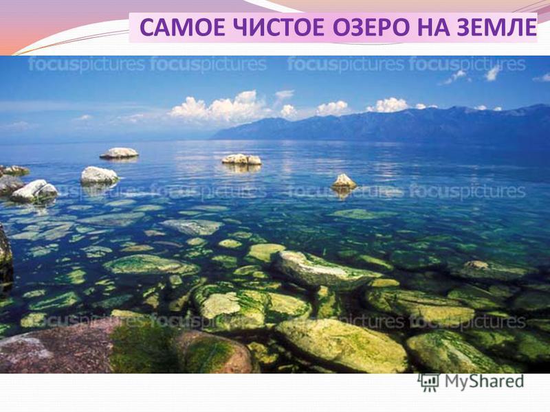 САМОЕ ЧИСТОЕ ОЗЕРО НА ЗЕМЛЕ Редкую чистоту обуславливает армада рачков, которая способна трижды очистить верхний (50 м) слой воды; Много кислорода.