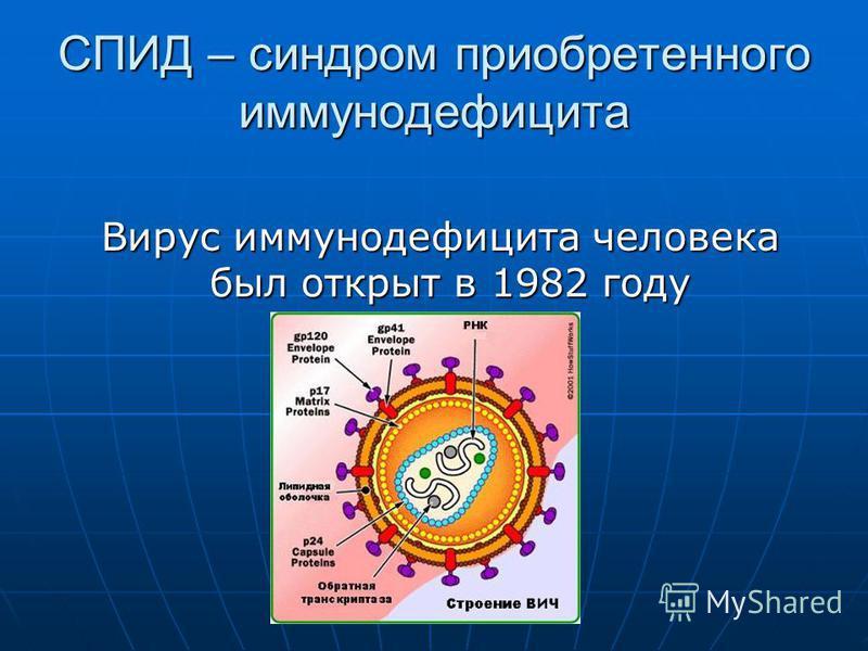 СПИД – синдром приобретенного иммунодефицита Вирус иммунодефицита человека был открыт в 1982 году Вирус иммунодефицита человека был открыт в 1982 году