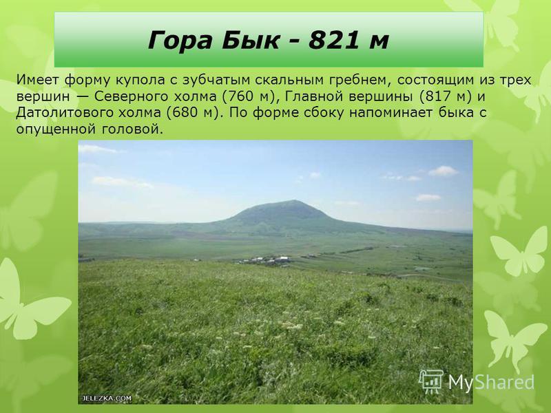 Гора Бык - 821 м Имеет форму купола с зубчатым скальным гребнем, состоящим из трех вершин Северного холма (760 м), Главной вершины (817 м) и Датолитового холма (680 м). По форме сбоку напоминает быка с опущенной головой.