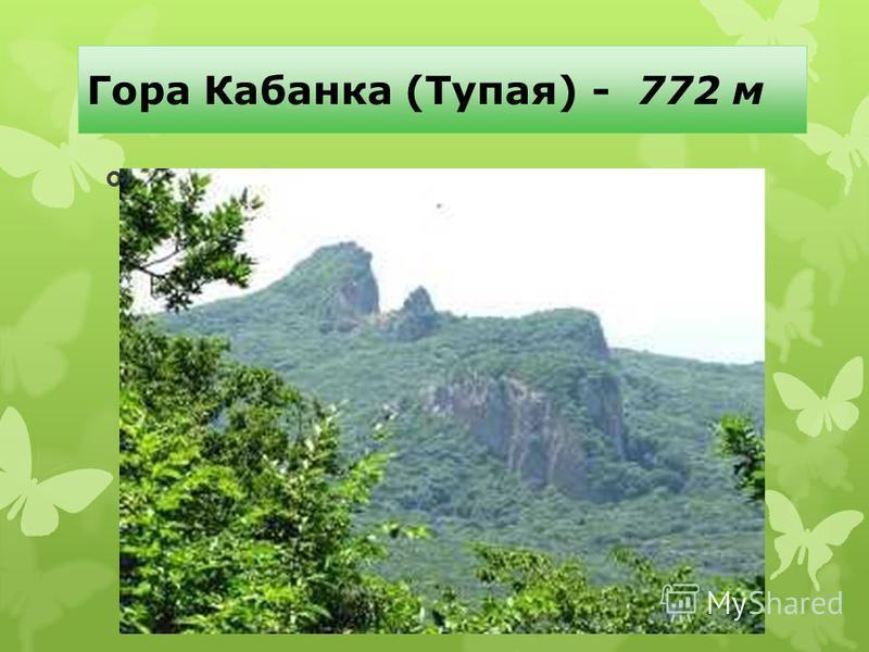 Гора Кабанка (Тупая) - 772 м Памятник природы. Представляет собой живописную скальную гряду размером 150×350 м, вытянутую на северо-восток и сложенную бештаунитами, сбоку напоминающую лежащего кабана. Имеет вид ступени с пологим южным и отвесными зап