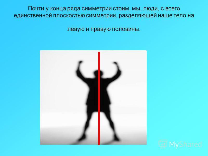 Почти у конца ряда симметрии стоим, мы, люди, с всего единственной плоскостью симметрии, разделяющей наше тело на левую и правую половины.
