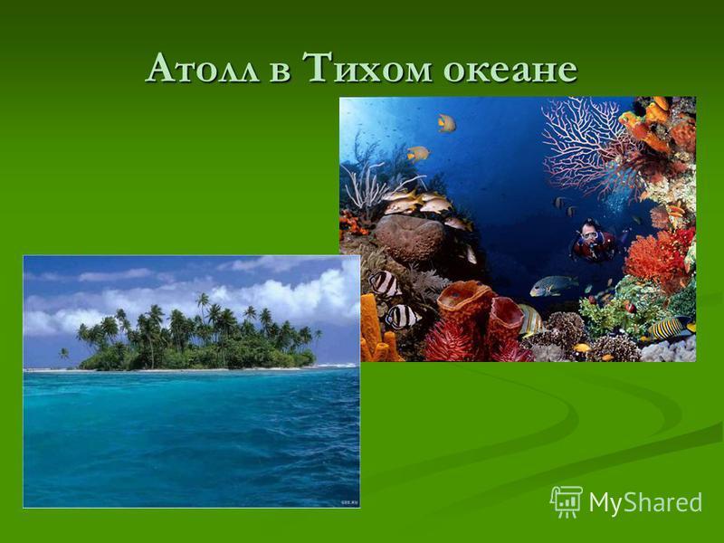 Атолл в Тихом океане