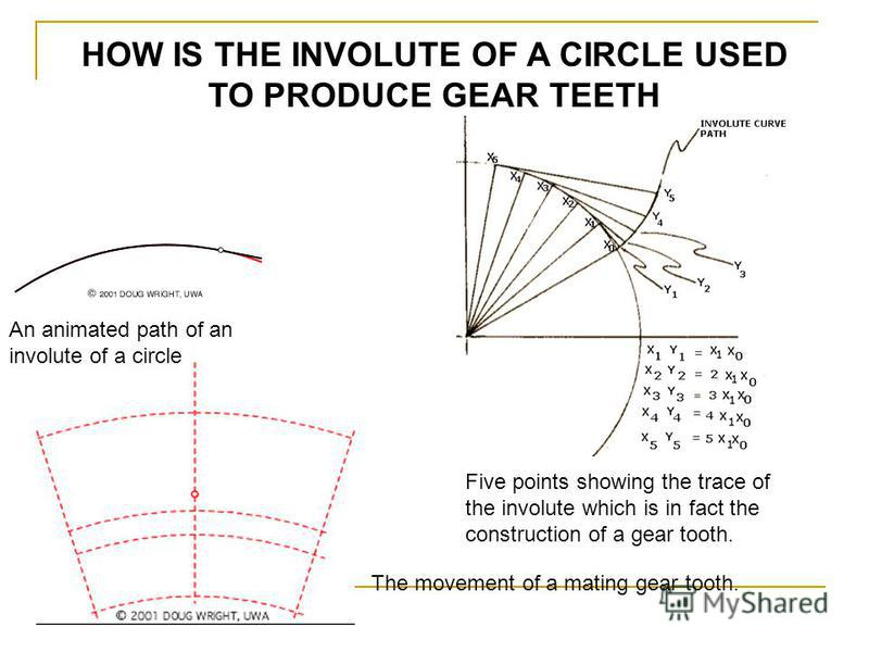 HOW IS THE INVOLUTE OF A CIRCLE USED TO PRODUCE GEAR TEETH An animated path of an involute of a circle Five points showing the trace of the involute which is in fact the construction of a gear tooth. The movement of a mating gear tooth.