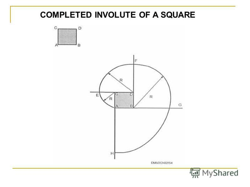 COMPLETED INVOLUTE OF A SQUARE