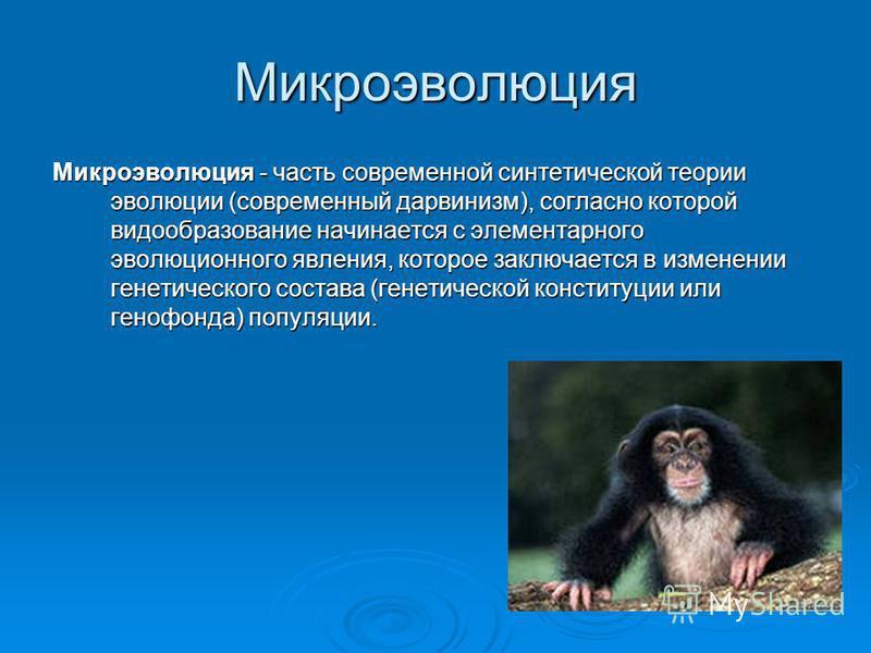 Микроэволюция Микроэволюция - часть современной синтетической теории эволюции (современный дарвинизм), согласно которой видообразование начинается с элементарного эволюционного явления, которое заключается в изменении генетического состава (генетичес