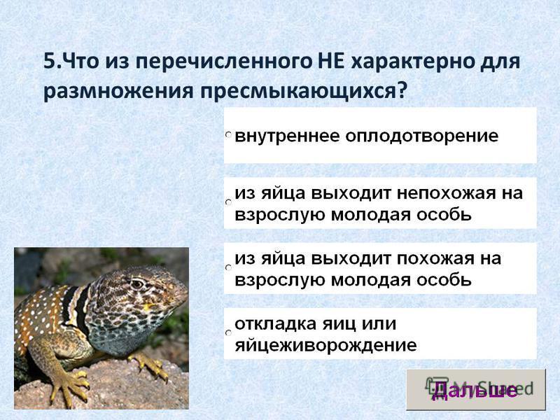 5. Что из перечисленного НЕ характерно для размножения пресмыкающихся?